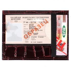 Обложка для автодокументов Premier-О-74   (компакт)    натуральная кожа бордо крокодил крупный   (14)